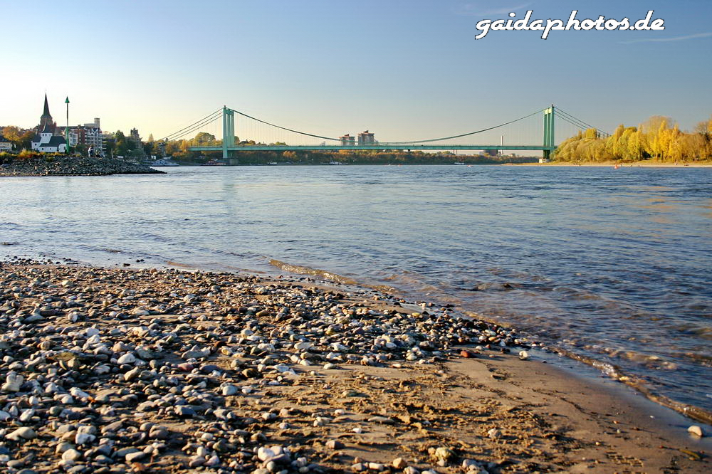 Niedrigwasser am Rhein