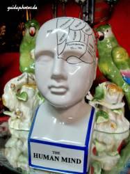 Kopf Gehirn