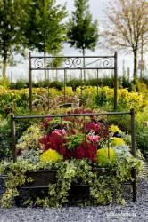 Blumenbeet oder Blumenbett