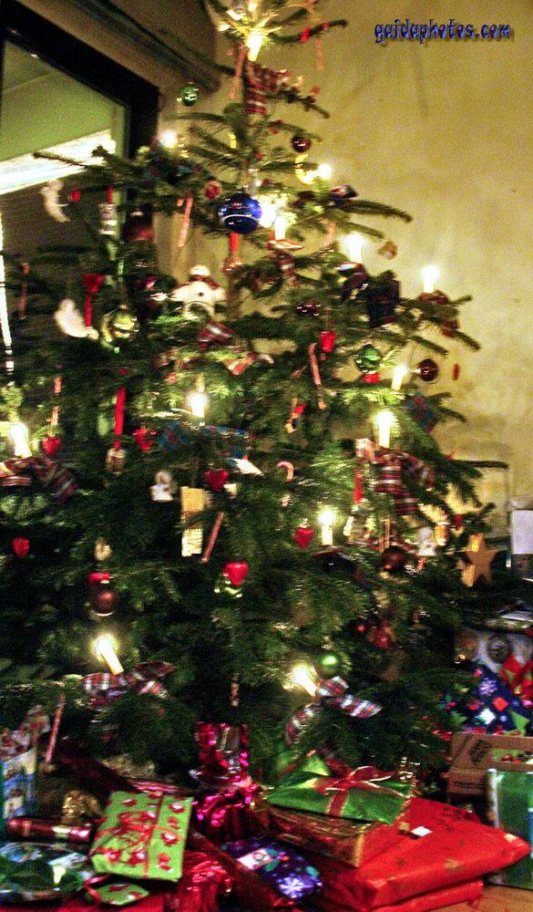 Weihnachtsbaum Tannenbaum.Weihnachtsbaum Christbaum Tannenbaum Gaidaphotos Gallerie